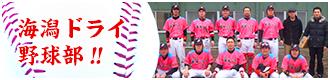 海潟ドライ野球部